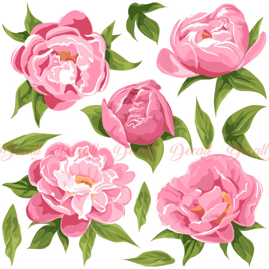 Pink Fragrant Peonies Flowers - Flower Wall Stickers - DWS1037 - Wall-Stickers - Decall.ca
