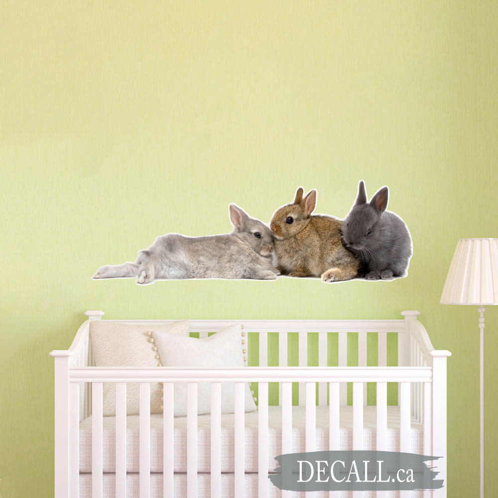 Three Bunnies Animal Wall Sticker DWS1223