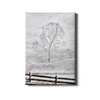 Snow Dusting - College Wall Art