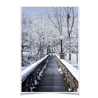 Winter Bridge - College Wall Art#Poster