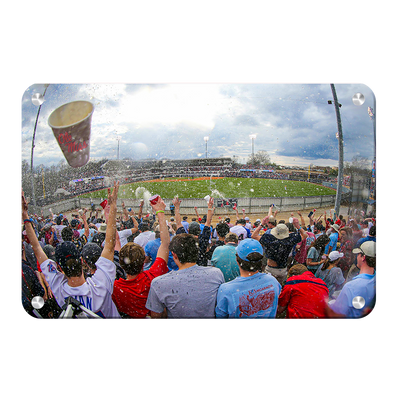 Ole Miss Rebels - Swayze Shower Right Field - College Wall Art #Metal
