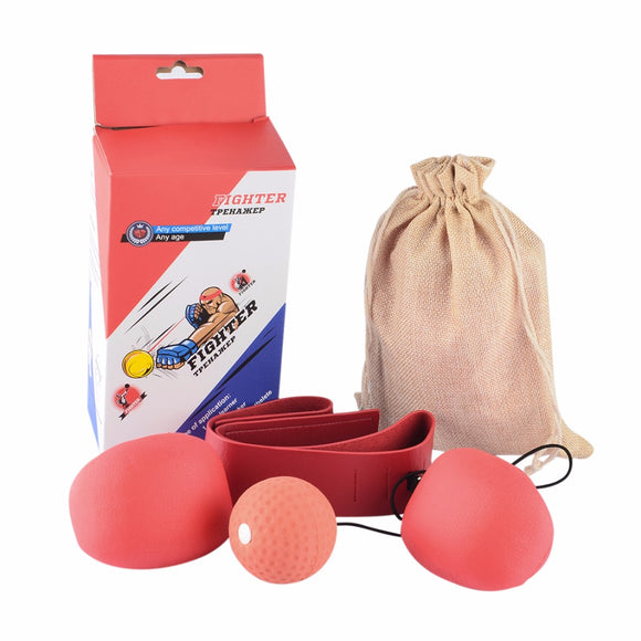 Boxing Training Speedball Set