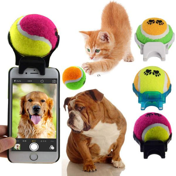 Pet Selfie Stick Ball