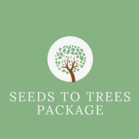 JT Career Consulting Seeds to Trees Package
