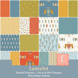 "Citrus & Mint Designs Lancelot 10"" Stacker 42 10-inch Squares Layer Cake Riley Blake 10-7080-42"