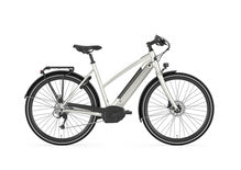 Gazelle CityZen T9 Electric City Bike