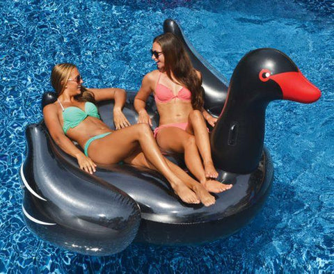 Giant Black Swan Swimming Pool Float