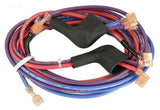 Rear Wire Harness, DS
