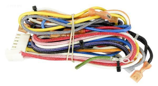 Main Wire Harness