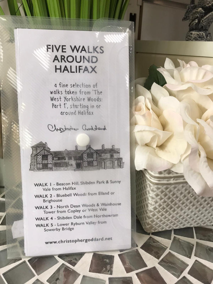 Five Walks Around Halifax