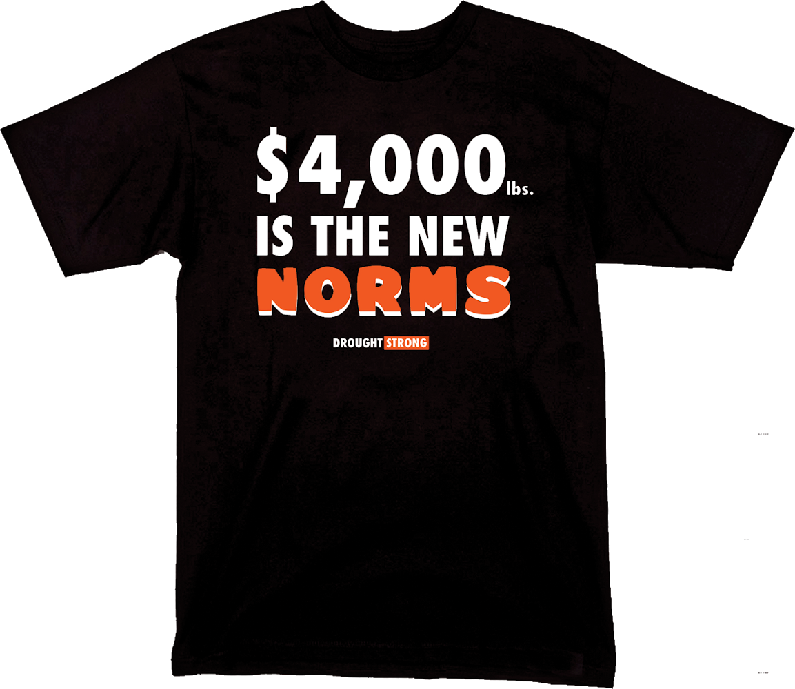 CALI PLUG '$4000 is the New Norms' T-SHIRT