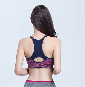 Bra Padded Push Up for Sport Gym Fitness Yoga Running Quality Superior