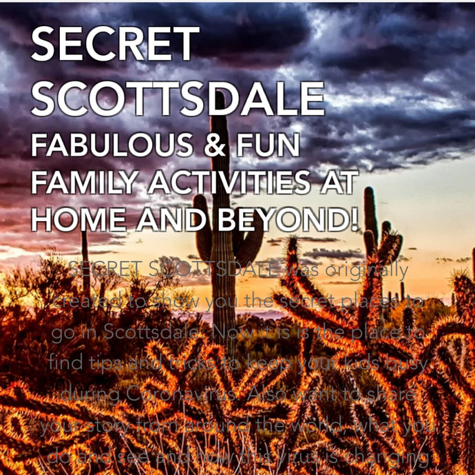 The Secret Scottsdale - November 2020