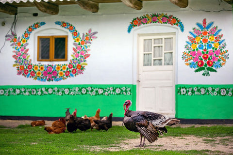 house wall painted in flowery pattern and chicken and turkey sitting at the front of the house