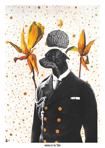 Zeph Mind | Collage Art Postcards | Pack of 12