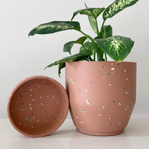 The Northern Habitat | Funnel Planter | 7""