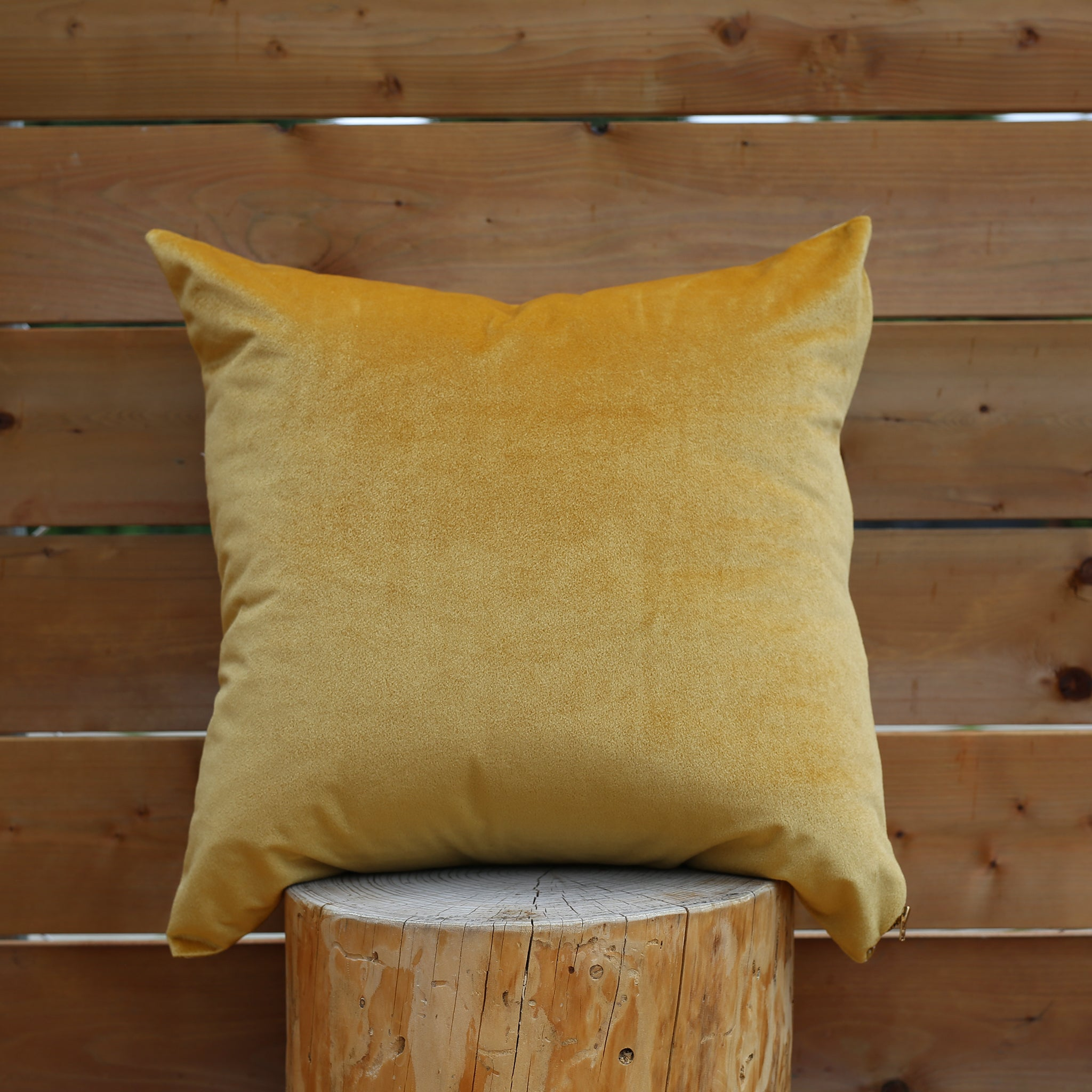 Bezhig 20x20 Pillow △ White/Mustard