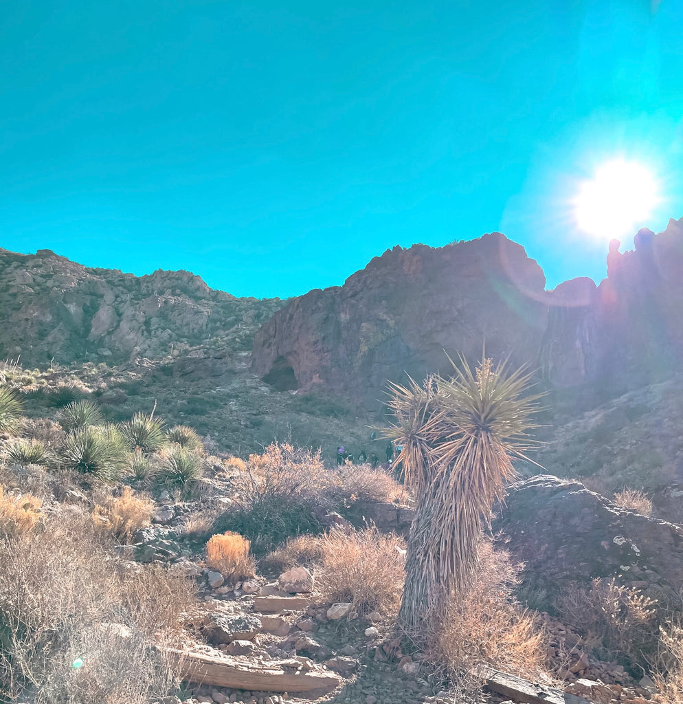 5 El Paso Must-Do Hiking Trails