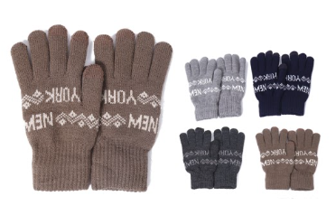 Wholesale Clothing Accessories Assorted Fall Winter Gloves NTT35