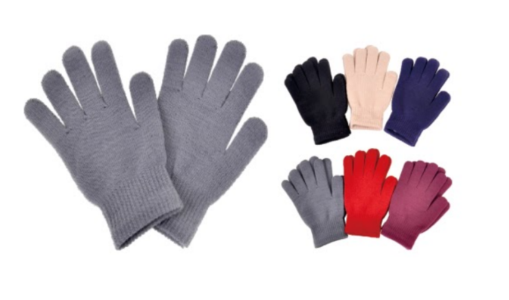Wholesale Clothing Accessories Assorted Fall Winter Gloves NTTG4