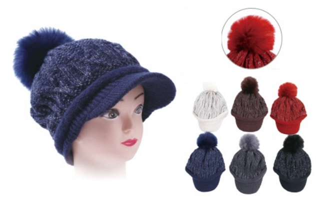 Wholesale Clothing Accessories Assorted Fall Winter Hats NTT09