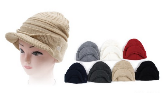 Wholesale Clothing Accessories Assorted Fall Winter Hats NTT53