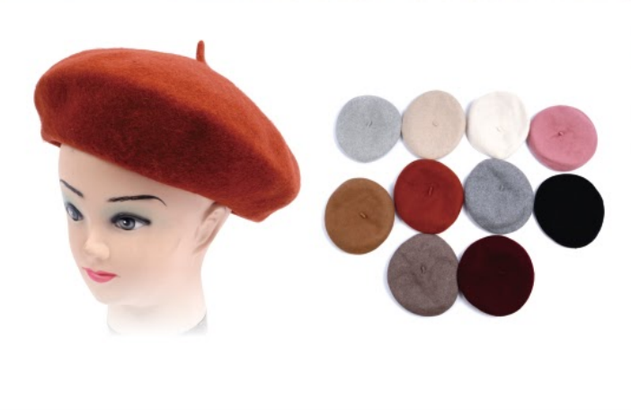 Wholesale CLOTHING Accessories Assorted Fall Winter Hats NTTH71