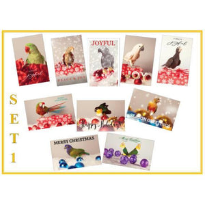 Festive Parrot Christmas Cards - Set 1