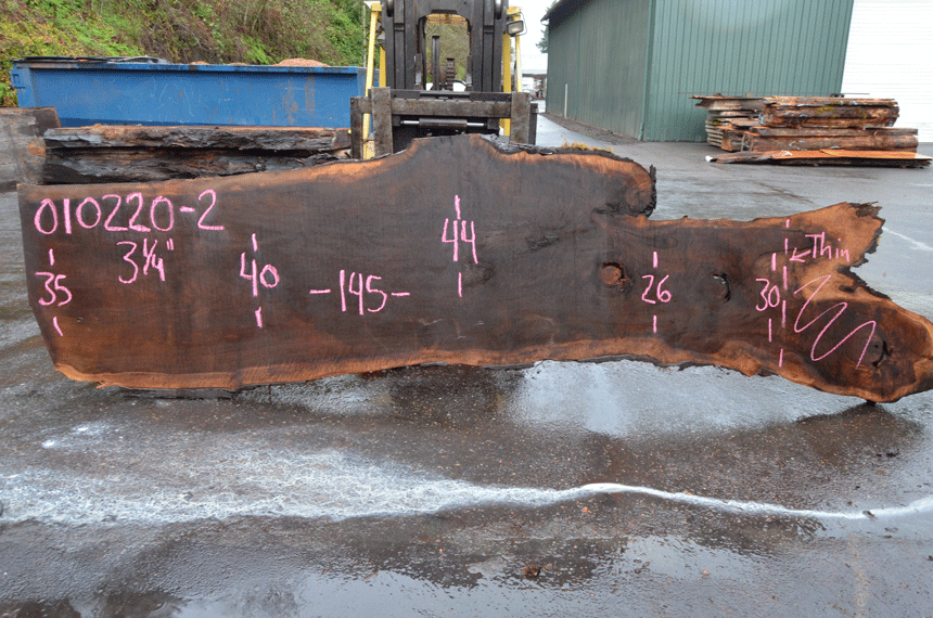 Oregon Black Walnut Slab 010220-02