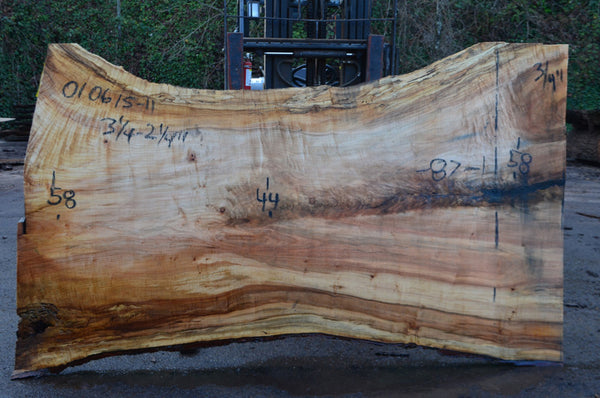 Big Leaf Maple Slab 010615-11