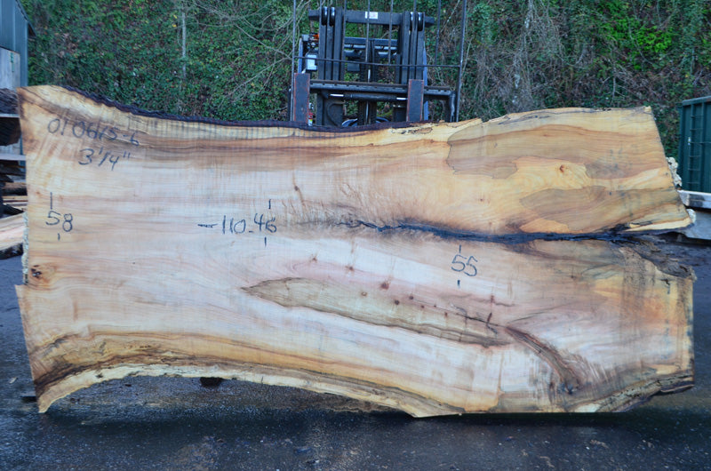 Big Leaf Maple Slab 010615-06