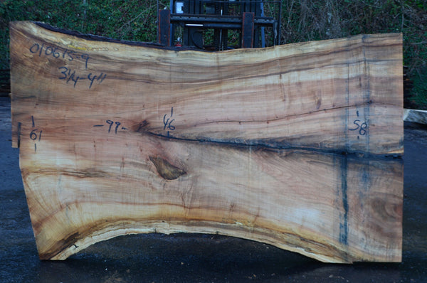 Big Leaf Maple Slab 010615-09
