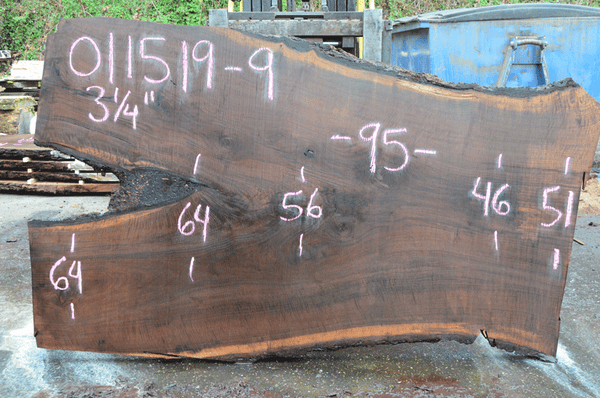 011519-09 Oregon Black Walnut Slab
