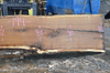 012719-02 Oregon White Oak Slab