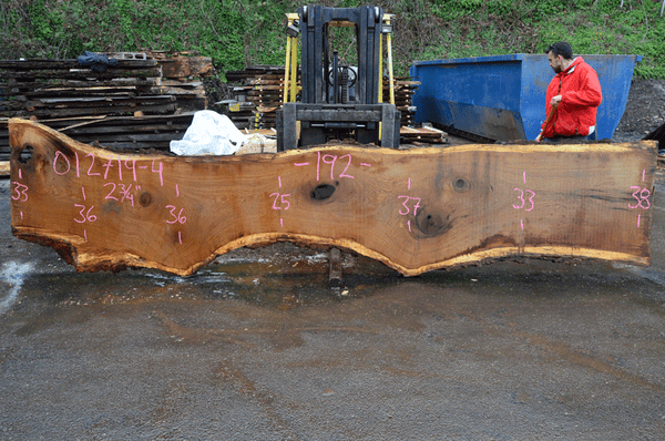 012719-04 Oregon White Oak Slab