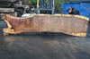 012819-01 Oregon White Oak Slab