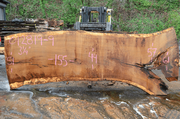 012819-09 Oregon White Oak Slab