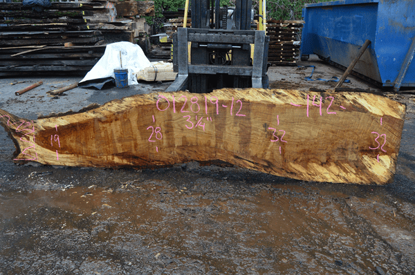 012819-12 Oregon White Oak Slab
