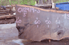 012919-03 Oregon Black Walnut Slab