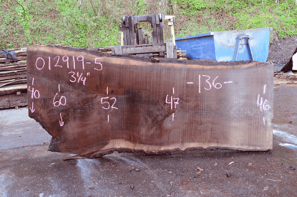 012919-05 Oregon Black Walnut Slab