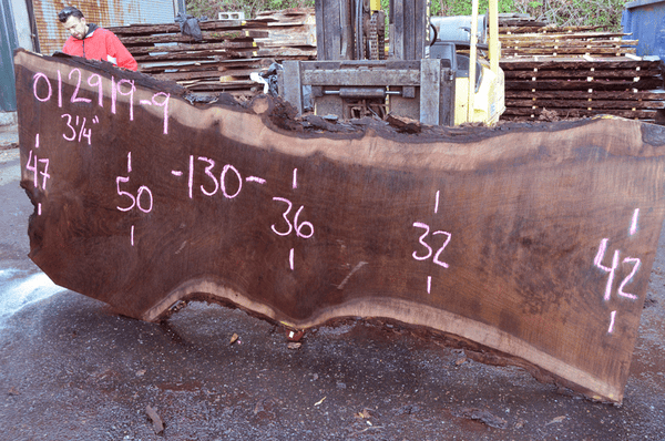 012919-09 Oregon Black Walnut Slab