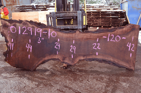 012919-10 Oregon Black Walnut Slab