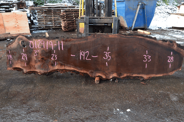 012919-11 Oregon Black Walnut Slab