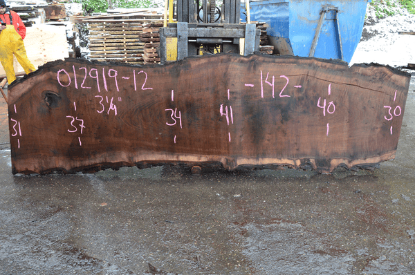 012919-12 Oregon Black Walnut Slab