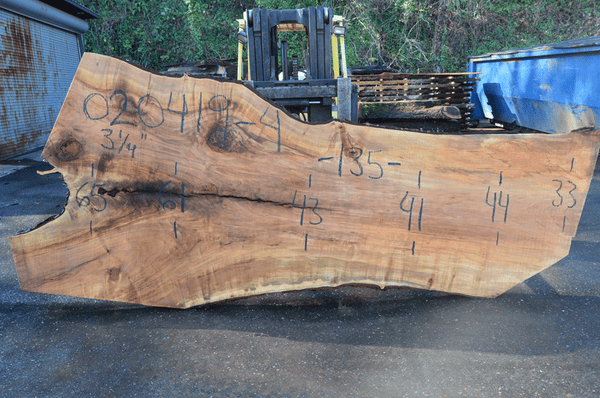 020419-04 Big Leaf Maple Slab