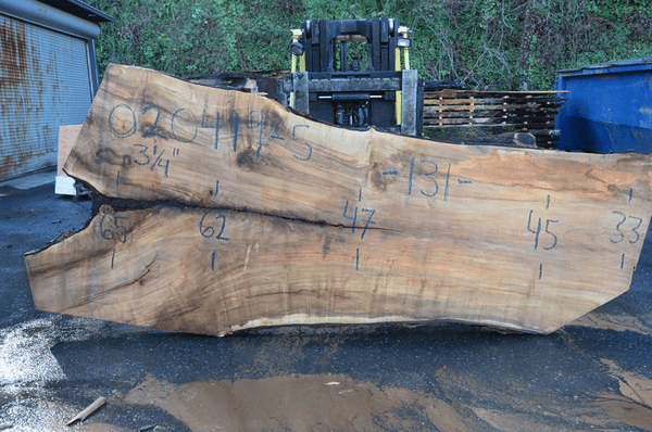 020419-05 Big Leaf Maple Slab