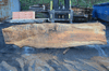 020419-09 Big Leaf Maple Slab