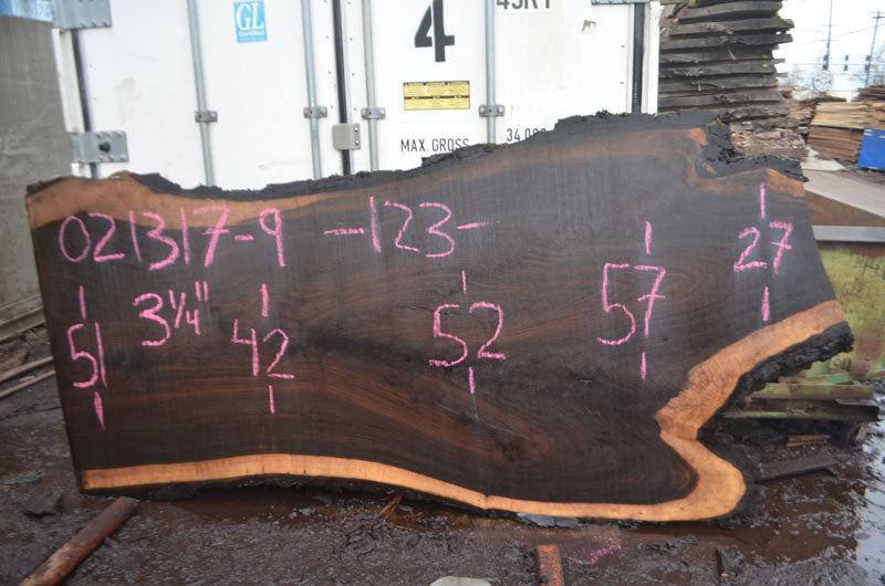 Oregon Black Walnut Slab 021317-09