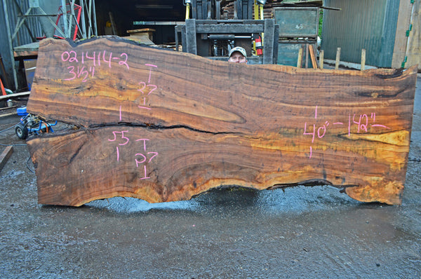 Big Leaf Maple Slab 021414-02