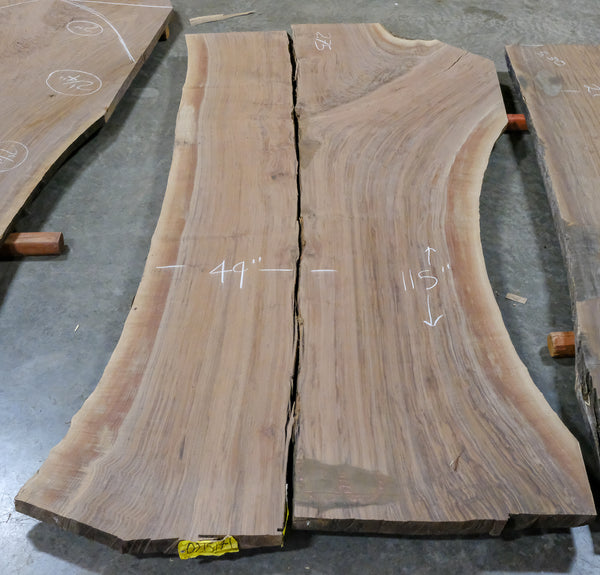 Oregon Black Walnut Slab 021517-1